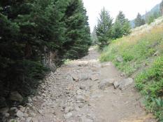 Loose trail